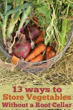 Growing Vegetables, Fruits And Veggies, Fruits And Vegetables, Store Vegetables, Growing Plants, Storing Fruit, Root Cellar, Preserving Food, Canning Recipes