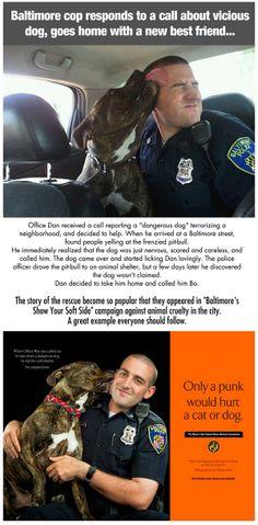 Baltimore cop saves a not so dangerous dog, best buddies ensue.