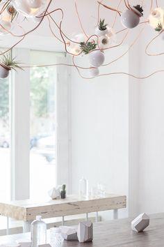 copper, lights, plants!