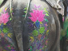 Elephant Decorated with Colorful Painting at Elephant Festival, Jaipur, Rajasthan, India Photographic Print