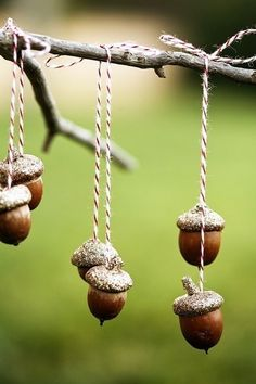 hanging acorns -- take a branch and place in a vase then tie acorns on strings and hang like ornaments <3 You can spraypain the acorns silver or gold for an elegant touch.