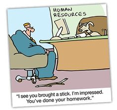 Image result for career research cartoon