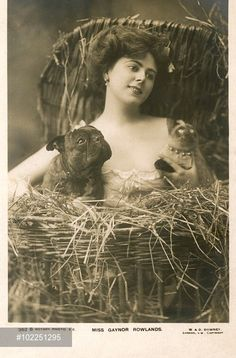0 Gaynor Rowlands (1883-1906), English actress, singer and dancer,   with a Siamese cat and a   bulldog