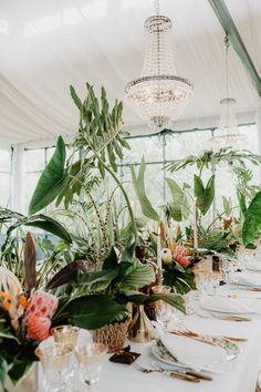 Stephanie and Andrew's reception took place in a greenhouse at Mulino dell'Olio, an olive oil mill turned venue. Photo: @rossellaputinophotographer Tropical Wedding Reception, Outdoor Wedding Inspiration, Wedding Ideas, Reception Decorations, Reception Ideas, Table Decorations, Tropical Flowers, Wedding Giveaways, Elegant Bride