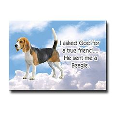 Beagle True Friend Fridge Magnet