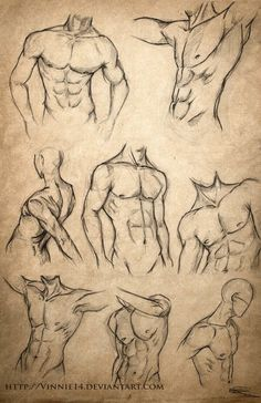 "Male Body Sketches by Más [ """"Male Body Sketches"" so I can look off of to draw male body figures."", ""How to draw male body types structure anatomy abs"", ""Male Body Sketches - Muscle, Rotation and different POV Body Sketches, Drawing Sketches, Sketching, Sexy Drawings, Body Drawing, Life Drawing, Drawing Muscles, How To Draw Muscles, Male Figure Drawing"