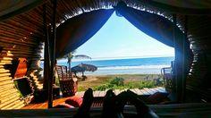 #Playaviva #México #ecotourism #ecohotel #nature #yoga #meditation #peace #romantic #playa viva