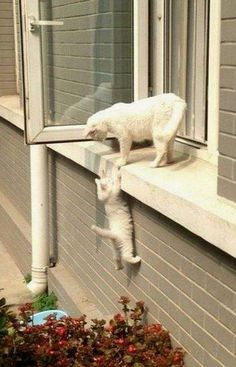 Hang on,mom is here..