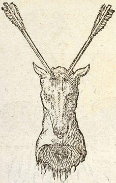 Pictura of Paradin, Claude: Devises heroïques (1551): AEMULA NATURAE.