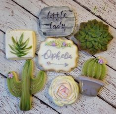 Boho Cactus and succulent baby shower favors. ❤️ Potted cactus and chevron arrow cutter from Iced Cookies, Cute Cookies, Royal Icing Cookies, Cupcake Cookies, Sugar Cookies, Cupcakes Succulents, Cacti And Succulents, Succulent Ideas, Baby Shower Cookies