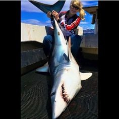 I would love to be able to say I've done this. Picture sent in by @hallamgirl_shefishes it was caught in Tasmania. This would be such an adrenaline rush landing this #mako great job #shark #fish #fishing #fishingtrip #winterfishing #water #salt #saltlife #offshore #offshorefishing #offshorelife #angler #outdoors #outdoorsman #outdoorwoman  #dreambig #bait #baitcaster #winter #honeyhole by lastcast_fishing
