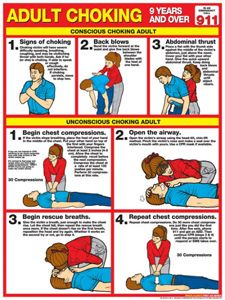 ADULT CHOKING First Aid for Adults Wall Chart Poster - 2011 Red Cross Guidelines