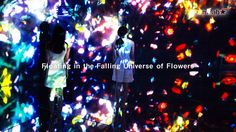 teamLab is artist collaborative, interdisciplinary creative group that brings together professionals from various fields of practice in the information age. Our work encompasses animation, sound, performance, internet, fashion, design, and even medical science.