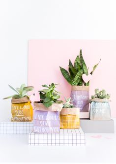 """Can't wait to give these adorable succulents in painted paper bags to the girls for Valentine's Day. Fun sayings like """"plant one on me"""" and """"life would succ without you"""" add a quirky yet sentimental touch."""
