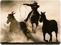 Resultado de imagem para cavalo