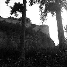 #buongiovedi in bianco e nero ❤️ . . .  #movingculturebrescia #atlantediviaggio #bresciaturismo #visititaliadascoprire #bresciacentro #bresciacity #bresciafoto #brixia_scatti #visitbrescia #igersbrescia #ig_brescia #igerslombardia #igersitalia #castellodibrescia #blackandwhite #blackandwhiteonly #blacknwhite_perfection #bw_beautiful_landscapes #oldtimes #leicacamera #leicaphotography #leicamonochrom #picoftheday #instagood