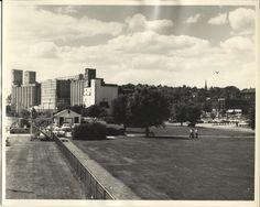 Riverfront Park Alton, IL 1958