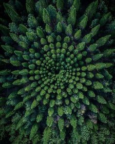 If You Need A Break, Just Take A Look At These 28 Calming Nature Photos - - Trust me, Mother Nature always provides the goods. Aerial Photography, Landscape Photography, Nature Photography, Photography Ideas, Photography Terms, Photography Books, Wedding Photography, Photography Flowers, Scenic Photography