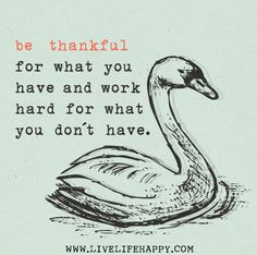 Be thankful for what you have and work hard for what you don't have. by deeplifequotes, via Flickr