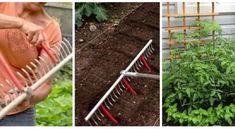 12 szuper ötlet, mely segít megkönnyíteni a kertészkedést Garden Planning, Garden Tools, Garden Ideas, Projects To Try, Simple, Outdoor, Mai, Ladder, Clever