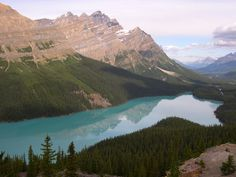 Turquoise - Peyto Lake Canada