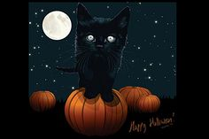 Google Image Result for http://www.bandofcats.com/wp-content/uploads/2009/10/cat-halloween-wallpaper_12.jpg