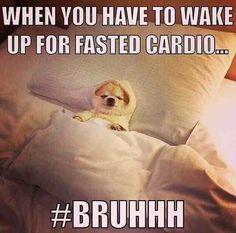 Peak Week   Bodybuilding   Contest Prep   Funny Fitness   Gym Humour   Gym Memes