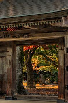 the entrance of Saiko-in temple, Ibaraki, Japan