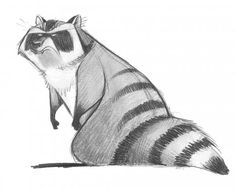 Trapper first test The Son of Bigfoot Olsen Creation Character Design Cartoon Sketches, Animal Sketches, Animal Drawings, Raccoon Illustration, Character Illustration, Cute Drawlings, Cute Art, Character Design Animation, Character Design References