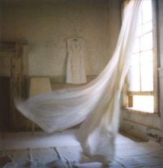 photographed by jen gotch.