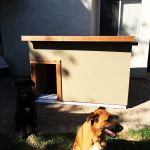 Large Dog House - Step by step Plans | HowToSpecialist - How to Build, Step by Step DIY Plans Large Dog House Plans, Extra Large Dog House, Large Dogs, Outdoor Shelters, Outdoor Dog, Outdoor Living, Dog House Blueprints, Dog Treat Toys, Dog Treats