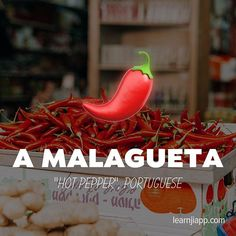 Tap on the image to find and engage with the Instagram post (along with photography credits). 👆  🏷 image tags: emoji,malagueta,portuguese,emojis,emoji4emoji,learningbrazilian,learningportuguese,português,🇵🇹,ios,emojisinthewild,hotpepper,app,learnwithemoji