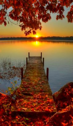 ~ autumn sunrise ~