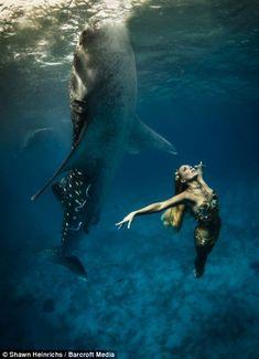 modella_posa_con_squalo_balena