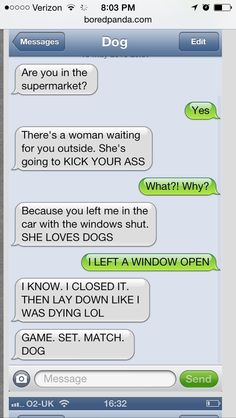 Dogs texting