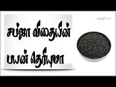 This video explains about sabja seeds benefits in Tamil language. Sabja seeds are less popular but having lot of health benefits, try to add your food items . Health Benefits, Health Tips, Gastric Problem, Pregnancy Tips, Weight Loss Tips, Home Remedies, Cooking Tips, Helpful Hints, Seeds