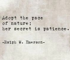 Patience. It's true is a virtue.