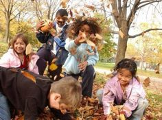 Life of a Leaf Chicago, Illinois  #Kids #Events