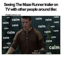 maze runner memes funny Quotes