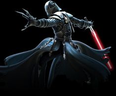 Lord Starkiller, successor to Darth Vader and the Emperor's apprentice