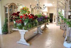 New flowers shop design los angeles ideas Flower Shop Interiors, Flower Market, Flower Shops, Flower Studio, Amazing Flowers, Flower Arrangements, Garden Design, Shop Ideas, 31 Ideas