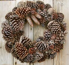 How to Make A Pinecone Wreath (Video). Bring the rustic appeal to your autumn or winter home with varying sized pinecones with this wreath tutorial. Informations About How to Make A Pinecone Wreath (V White Pine Cone, Pine Cone Art, Pine Cone Crafts, Wreath Crafts, Diy Wreath, Tulle Wreath, Burlap Wreaths, Door Wreaths, Pine Cone Wreath