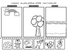 258 En Iyi Hayvanlar Goruntusu Hayvanlar Okul Oncesi Ve Faaliyetler