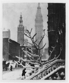 Alfred Stieglitz. This photo, to me, represents the jungle city of New York. The tree without leaves shows how humans built buildings and an entire city over the natural earth and nature.