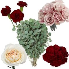 FiftyFlowers Burgundy Blush DIY Wedding Flower Pack