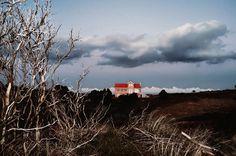 In Landscapes © Petros Koublis