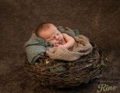 Newborn, portraits Portraits, Photos, Pictures, Head Shots, Portrait Photography, Portrait Paintings, Headshot Photography, Portrait