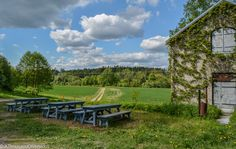 A date with Finnish nature #finnishcountryside #Finland #Helsinki #Vantaariver #haltialafarm