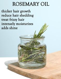 The Best way to Use Rosemary Oil for Hair Growth -- Browse the image for additional ideas. Hair Growth Shampoo, Hair Growth Oil, Natural Hair Growth, Natural Hair Styles, Rosemary Oil For Hair, Rosemary For Hair Growth, Diy Hair Care, Grow Long Hair, Beauty