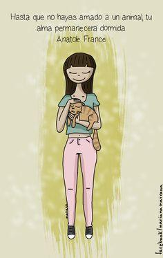 https://www.facebook.com/marianamarrana  #marianamarrana #cat #cats #gatos #illustration #ilustracion # amistad #amor